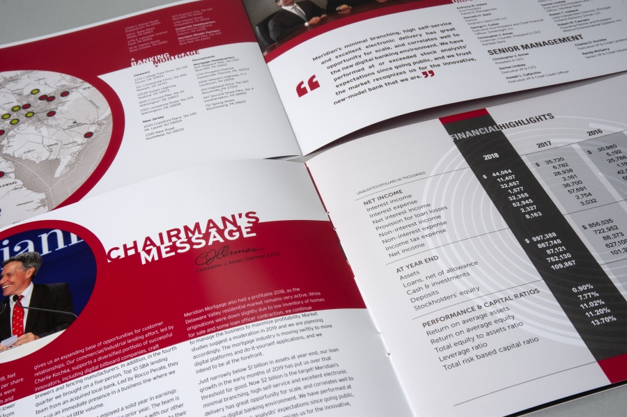 Meridian Report 2019 inside spreads